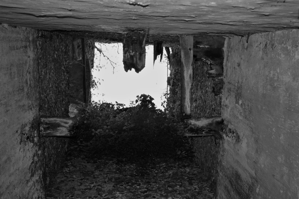 Inside the ruined tower.