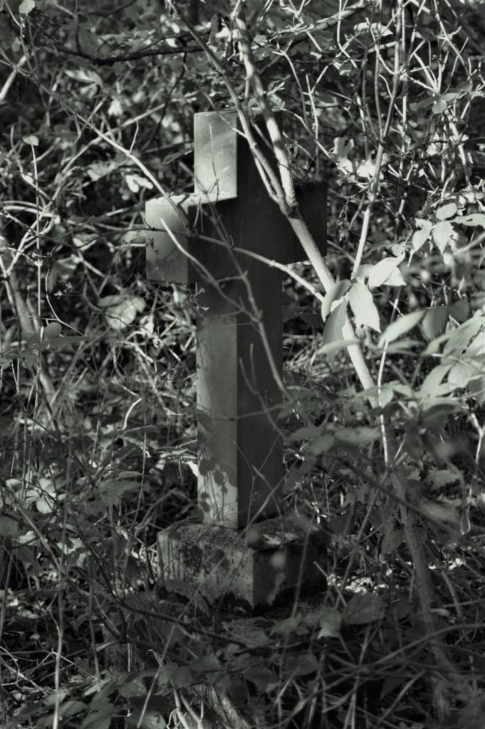 The shadowy cross.