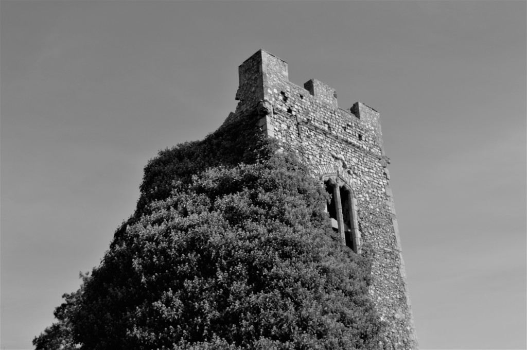 The ruined tower of the All Saint's Church being eaten by vines