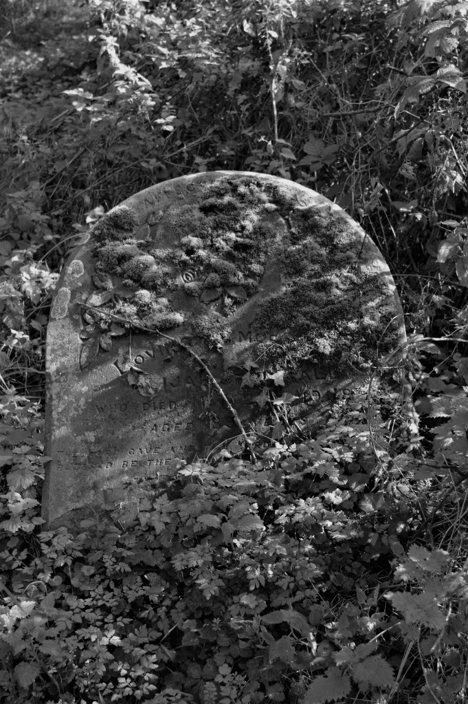A forgotten stone lost to the brambles.